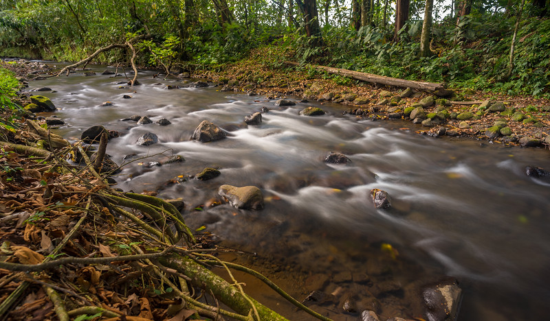 Small river in Costa Rica