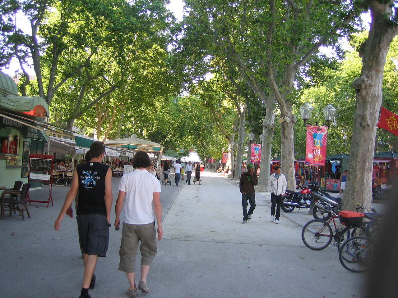 The outdoor market in the Comedy section of Montpellier