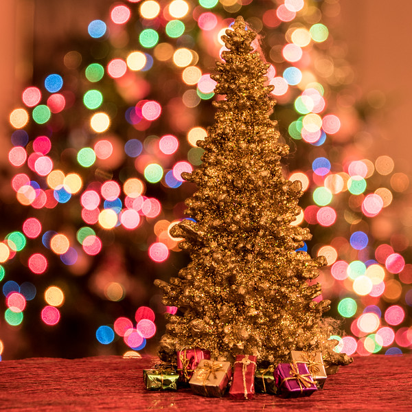 ChristmasBokeh-34.jpg