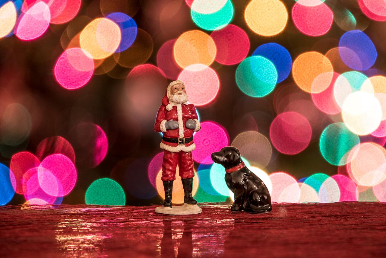ChristmasBokeh-32.jpg