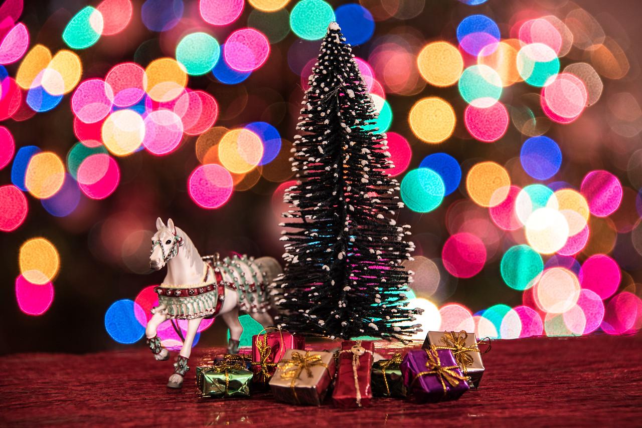ChristmasBokeh-36.jpg
