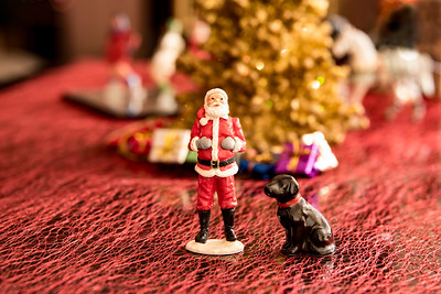 ChristmasBokeh-50-Edit.jpg