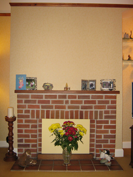 The lounge fireplace, to work out how to replace it