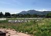 Boulder Community Gardens (3)