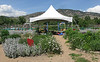 Boulder Community Gardens (9)