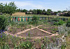 Boulder Community Gardens (8)