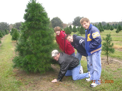 Christmas tree chopping at a new place since the Merry Christmas Tree Farm has sold out to a new development (boy were we shocked!).  This is the Christmas Tree Farm down the street from our house.   What cuties... Harry, Connor, Hayden, & Harrison.