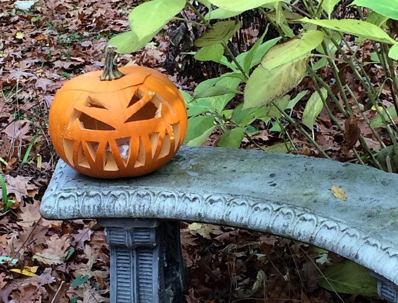 Jack-o-lantern on a Bench