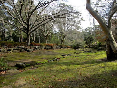 20100516-Blue Mountains-77