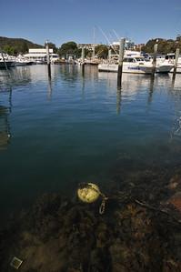 20091111-Nelson Bay-42