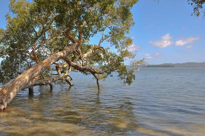 20091118-Nelson Bay-17