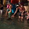 Fish feeding at Aquascene