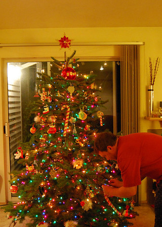 Jace did such a fine job in helping me trim the tree.