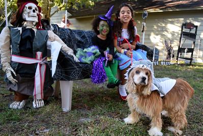 2014 Halloween Bovaween at the BooOOoo-va house (25)