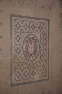 Medusa mosaic on you floor anyone?? Ephesus