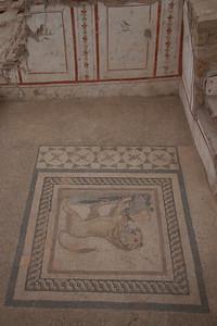 Mosaic Ephesus