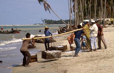 malaysia - khota bharu - fishing village (13)