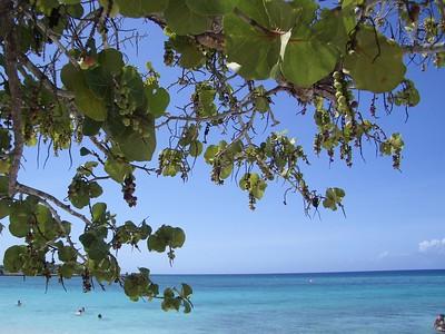 Playa Pesquero 2