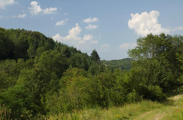 2006-07-18 Arboretum Royat