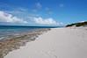 Turle Cove beach.