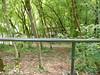 Chemin de croix vers ROCAMADOUR (46)
