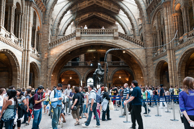 Main hall of the Natural History Museum, London, England.