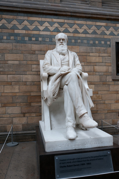Charles Darwin, Natural History Museum, London, England.