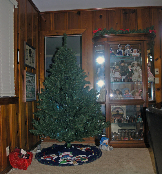 Dec 17.  The Christmas tree stands ready.  Gmom and I put the lights on the tree, but Jo Ann gave us strict instructions not to put any other decorations on the tree.  She wants to do that with Susan and Louise.
