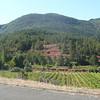 Roche rouge dans paysage vert