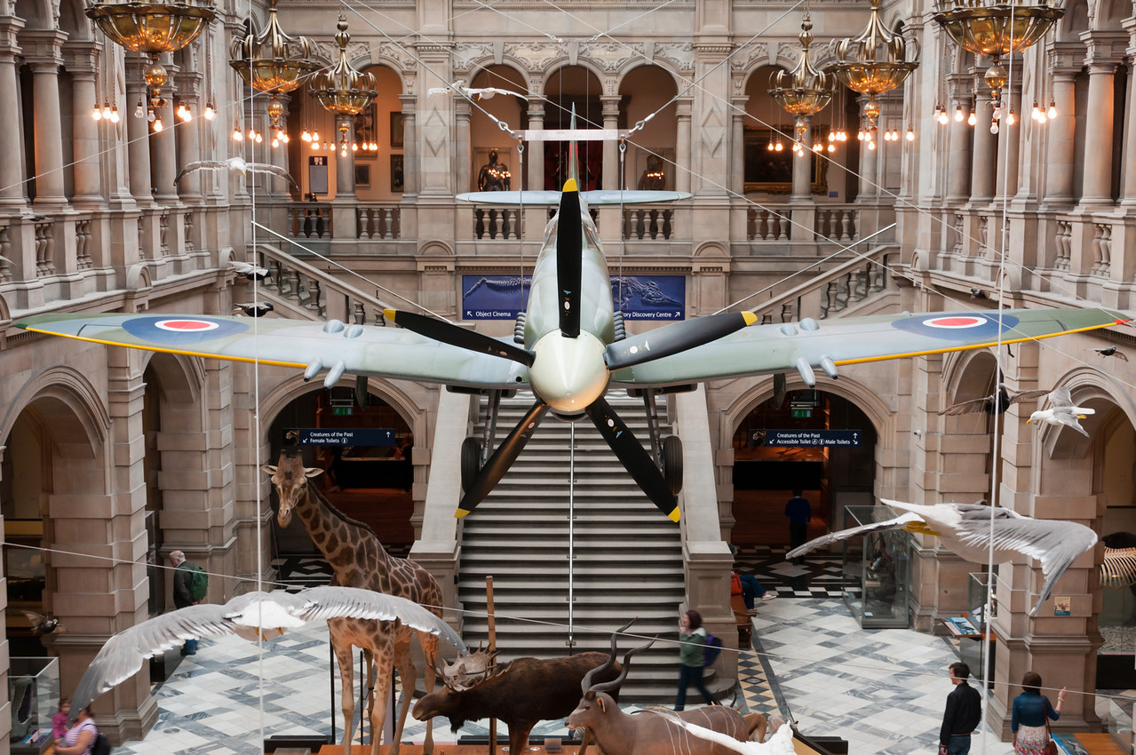 A Spitfire inside a museum, near stuffed birds !! this could never happen anywhere else.<br /> <br /> Kelvingrove art gallery and museum. Glasgow, Scotland.
