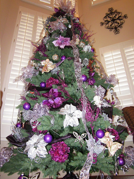 Pam got the Christmas spirit started by beautifully decorating our tree.