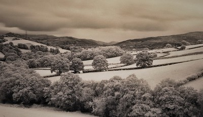 The View from the Cottage (IR)