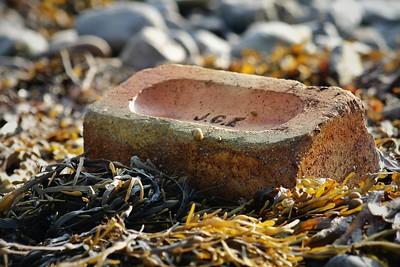 The Snail on the Brick on the Beach