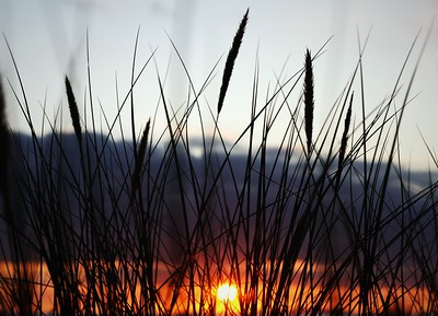 Sunset from the Dunes