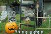 2075 Daytime View of 2011 BOOva Halloween