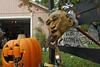 2073 Daytime View of 2011 BOOva Halloween