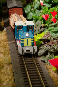 Conservatory Train