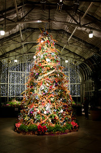 The Conservatory Christmas Tree