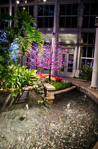 Fountains in the Conservatory Dome