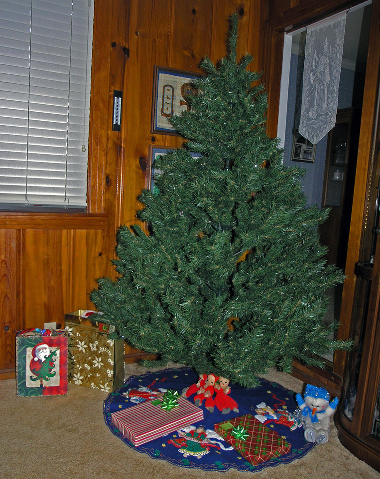 Dec 21.  The tree is up, but Jo Ann said not to decorate it.  She wants to do it, so wait until she arrives.  We put around the tree our gifts.