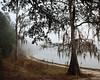 Silver Lake in Hernando County FL.