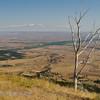 Looking east form Bighorn Forest across the South Dakota Plains - Fantastic views