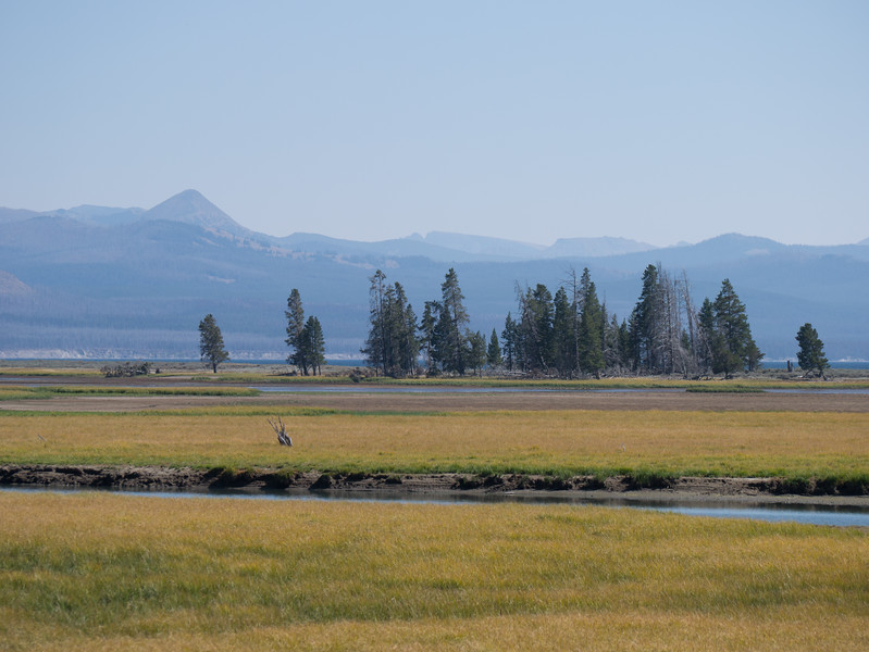 Our first entry into Yellowstone from the East on SR 14 . We saw massive fire damage and were not sure of what then to expect. It has been a very hot summer in the US and we wondered if we had made the right choice