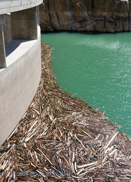 Log jams at Cody Reservoir dam