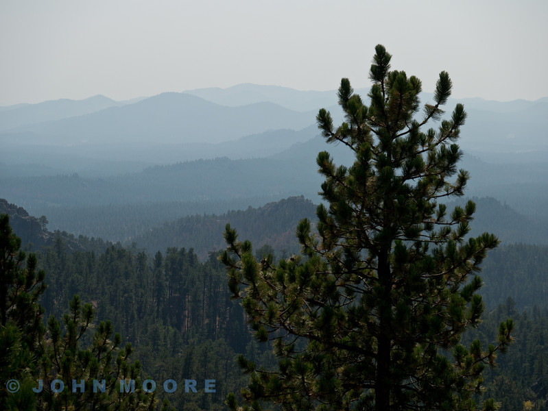 View near Mount Rushmore