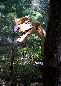 September 2012. After entering the Zoorassic Park exhibit at the Franklin Park Zoo, we were forced to sneak past the spitting dinosaur. Supposedly, this dude really existed and spat his way to glory.