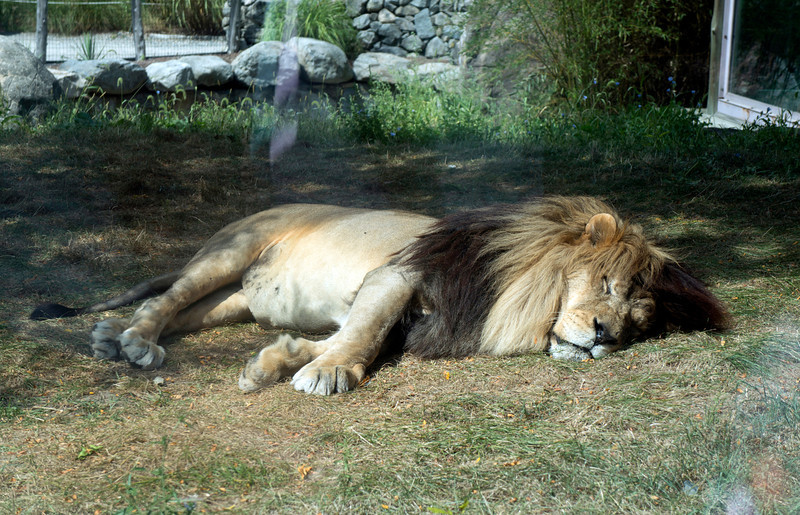 September 2012.