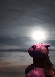 Humphrey & the Moon