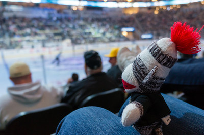 Sock monkey returns to the Consol