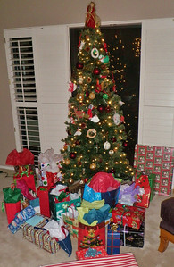 Annual Four Peaks Rotary holiday party and white elephant gift exchange.  In 2013 it was at George and Joan Aliory's home.